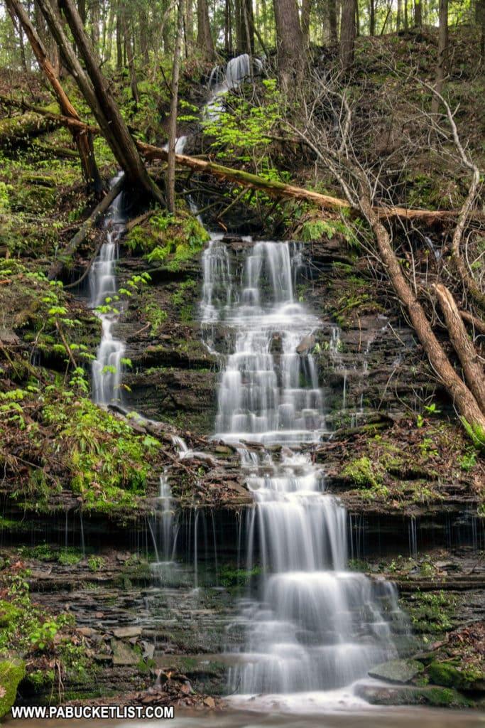 A seasonal tributary of Darlin Run in Tioga County Pennsylvania