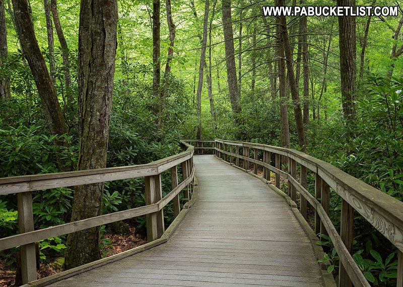 Boardwalk trail between Dingmans Falls and Silverthread Falls in Pike County, Pennsylvania.