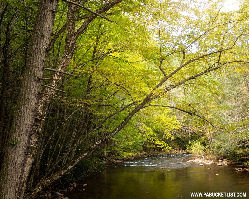 Great Trough Creek at Trough Creek State Park in Huntingdon County PA