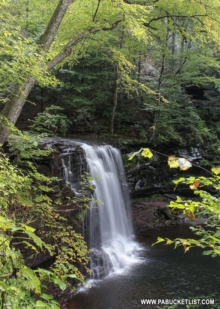 Harrison Wright Falls at Ricketts Glen State Park.