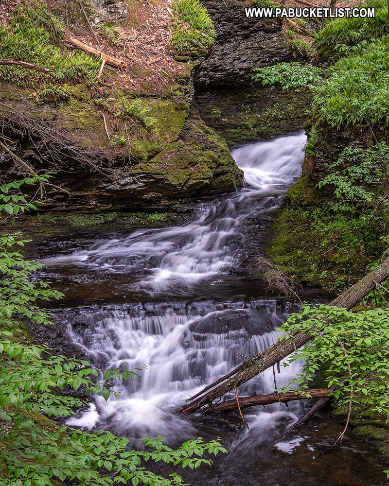 The Hornsbeck Creek waterfall trail in Pike County Pennsylvania.