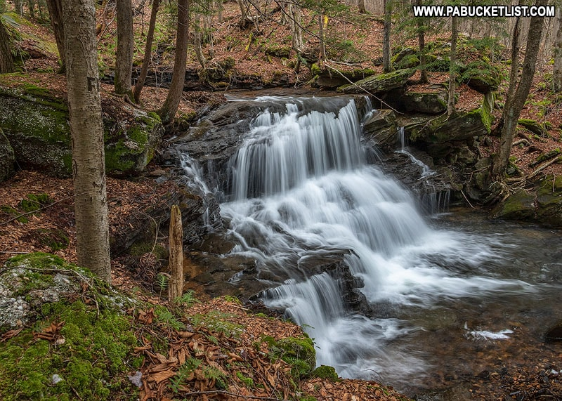 Logan Falls near Marienville Pennsylvania