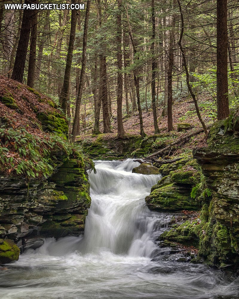 Mine Hole Run Falls in the Tioga State Forest