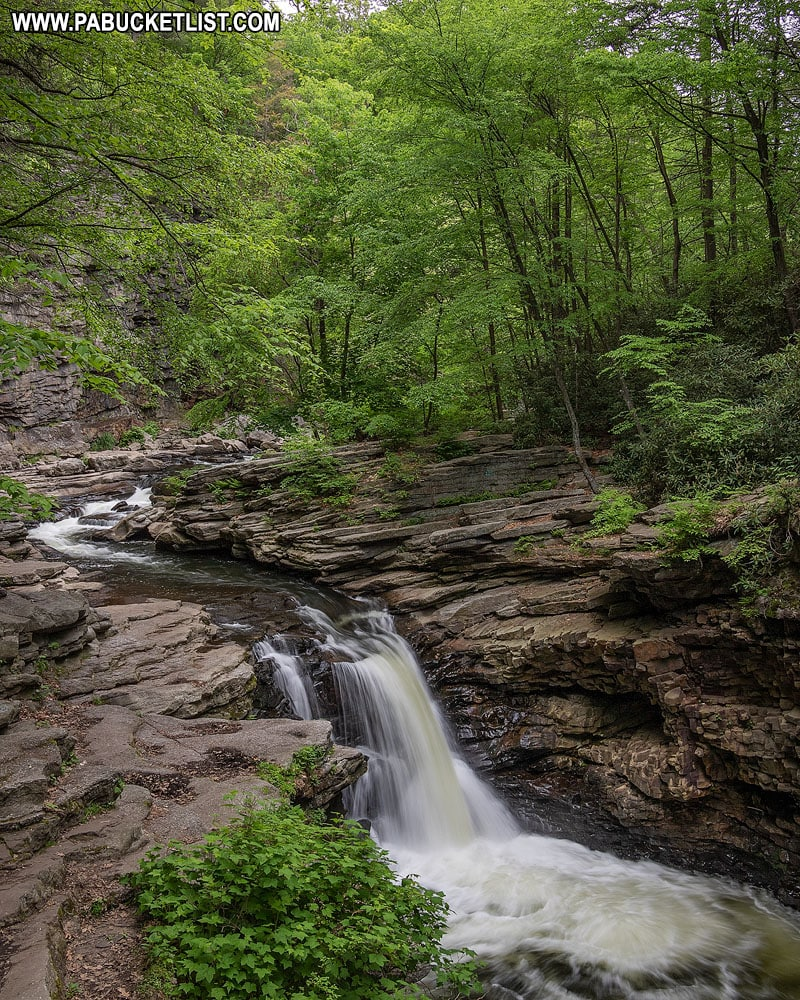 Nay Aug Falls in the Roaring Brook Gorge Scranton PA