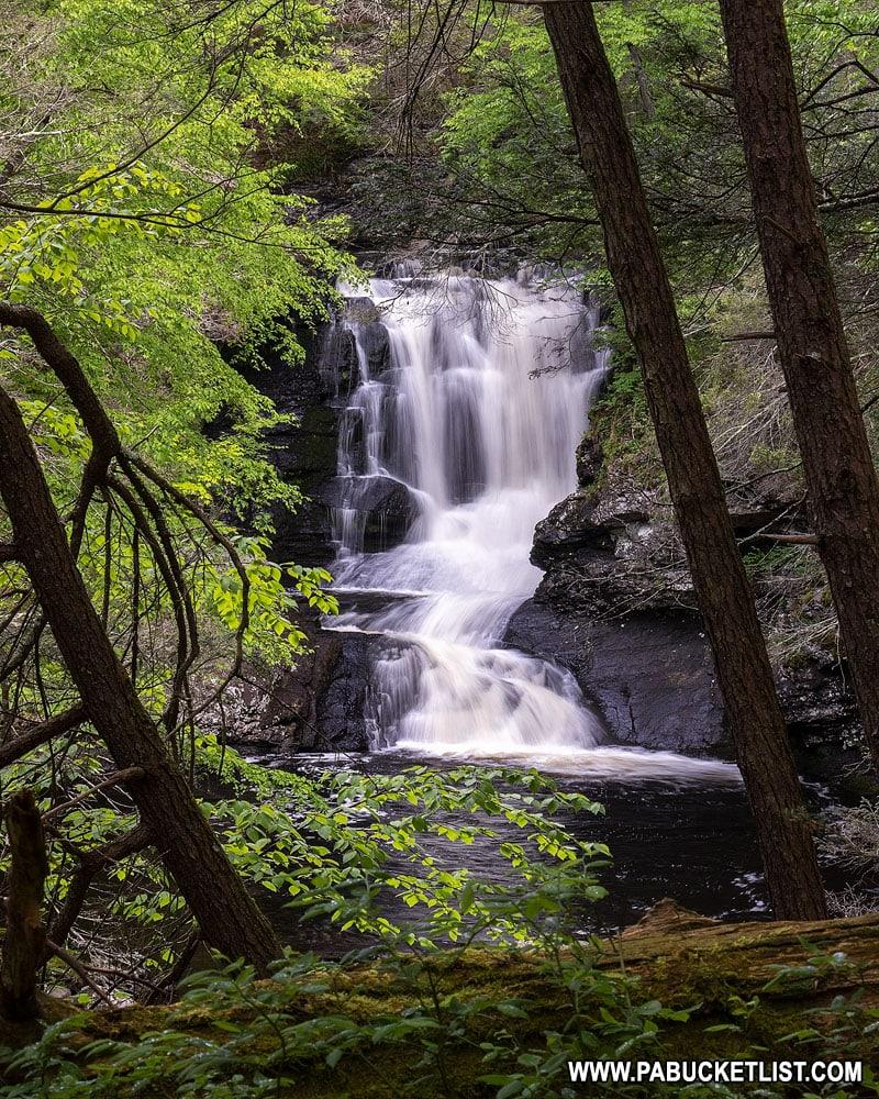 Unnamed waterfall on Raymondskill Creek in the Delaware Water Gap