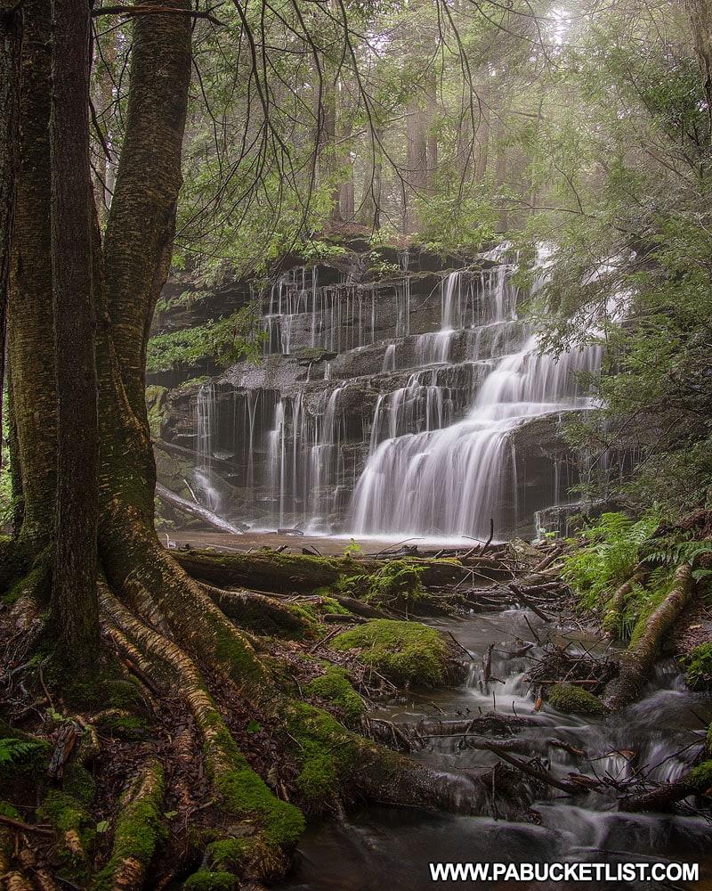 Rosecrans Falls in Clinton County Pennsylvania on a foggy summer morning.
