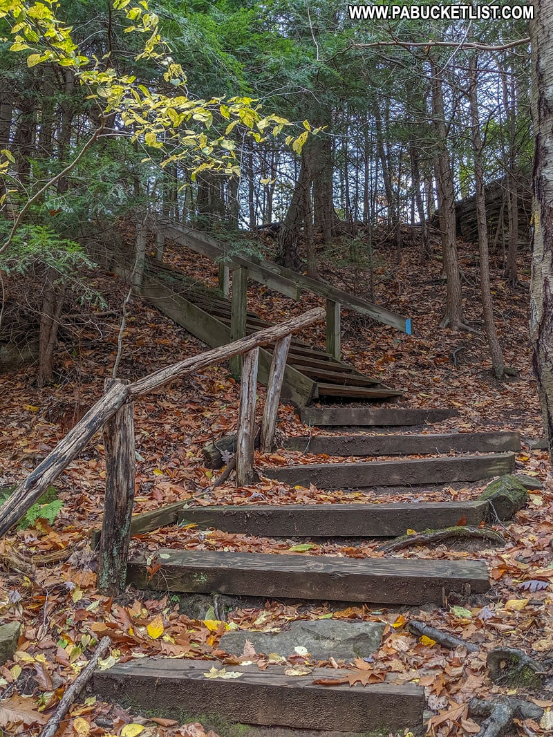 Staircase on the North Country Trail near Alpha Falls.