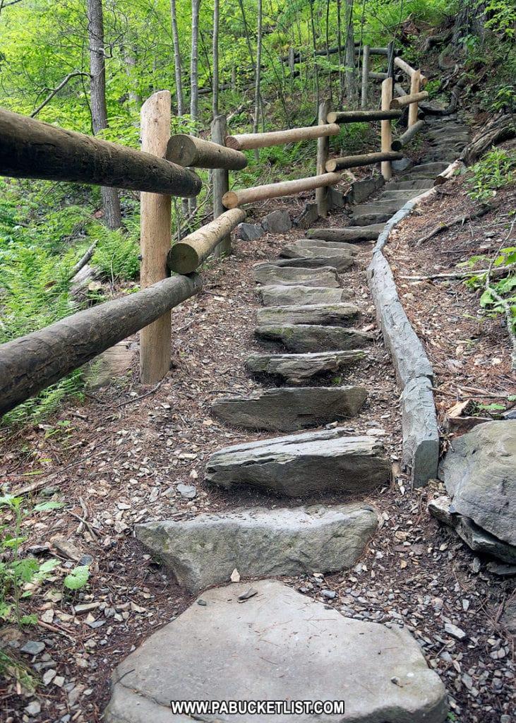 Hiking trail at Raymondskill Falls to lower observation area.