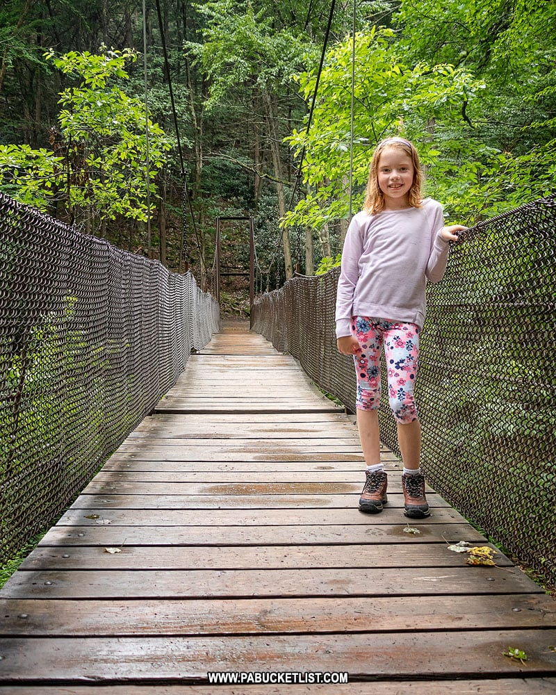 Suspension Bridge over Great Trough Creek in Huntingdon County Pennsylvania.