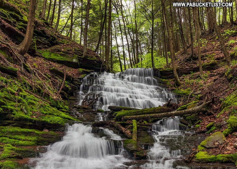 Waterfall on Bear Run in Tioga County.