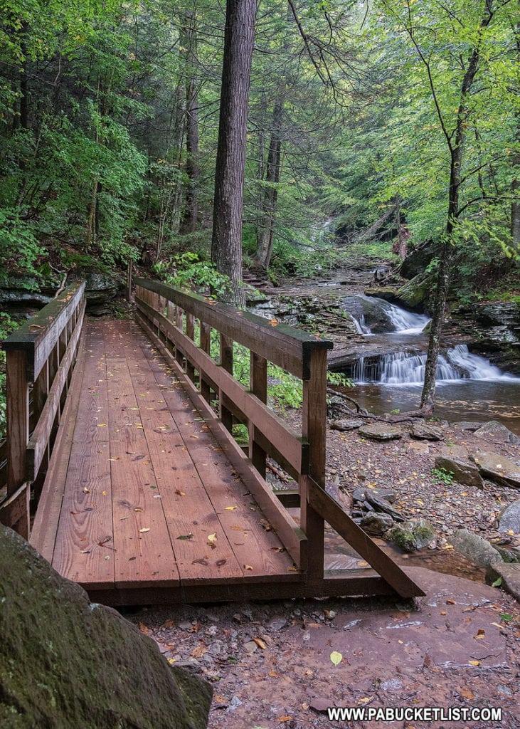Bridge at Waters Meet at Ricketts Glen State Park
