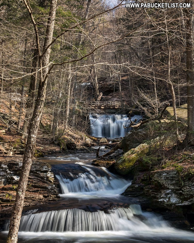 Waters Meet at Ricketts Glen State Park