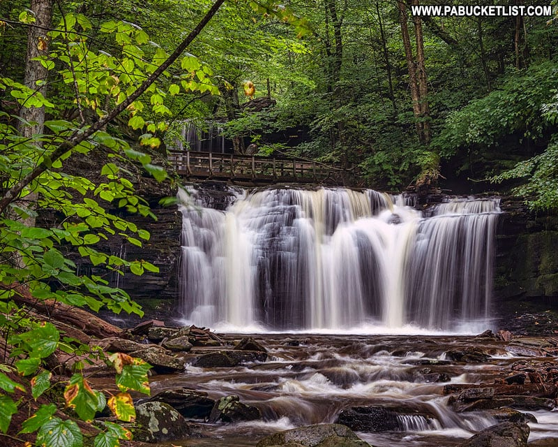 Wyandot Falls at Ricketts Glen State Park in PA