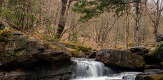 Lick Creek Falls in Tioga County PA
