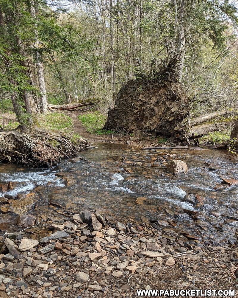 Wet crossing of Lick Creek along the Sand Run Falls Trail