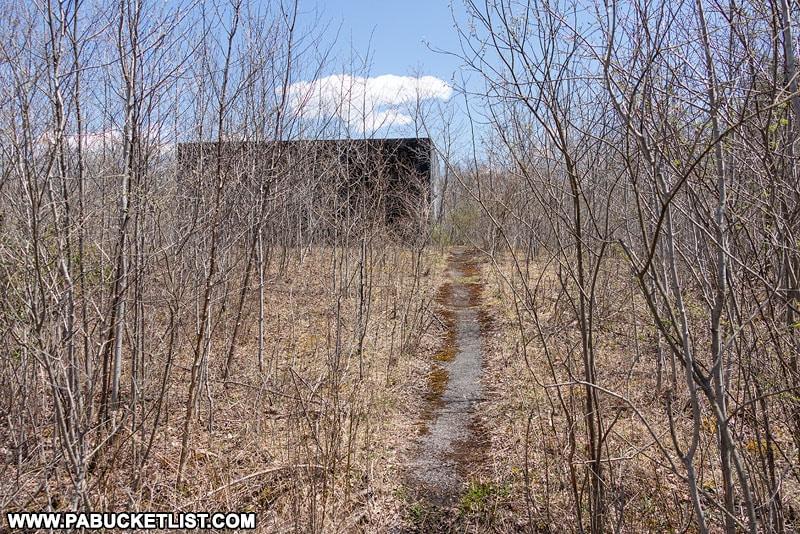 Remnants of pathway to the northern nuclear jet engine bunker in the Quehanna Wild Area.