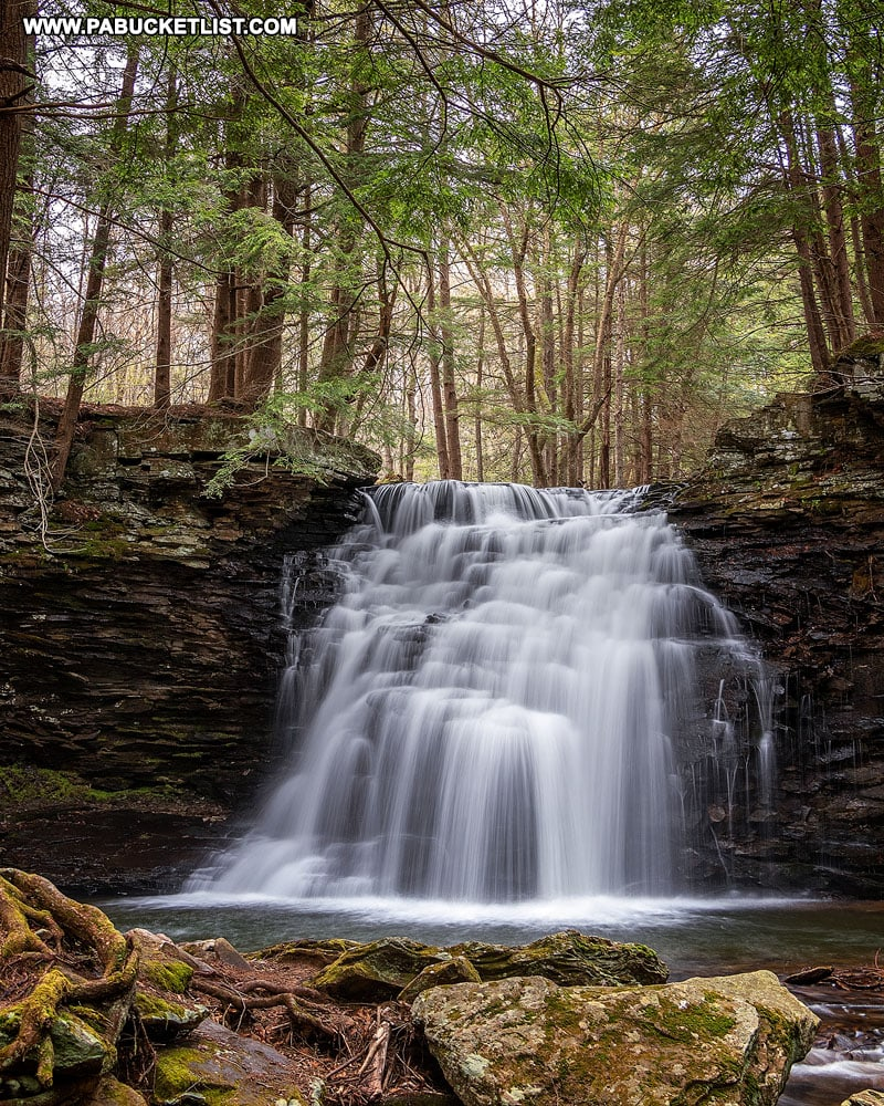 Sand Run Falls in Tioga County PA