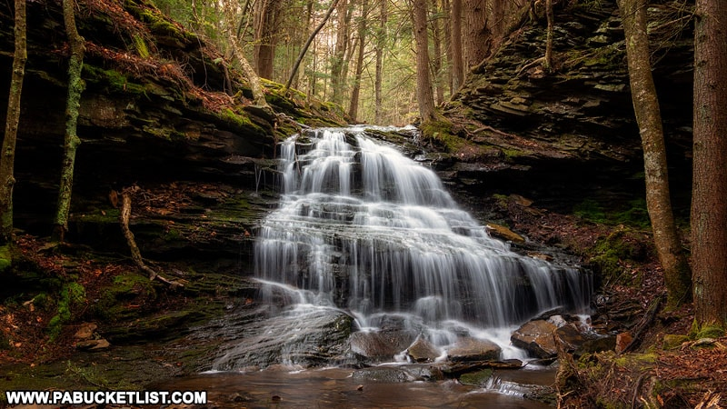 Unnamed waterfall in the Tioga State Forest near the Mid State Trail