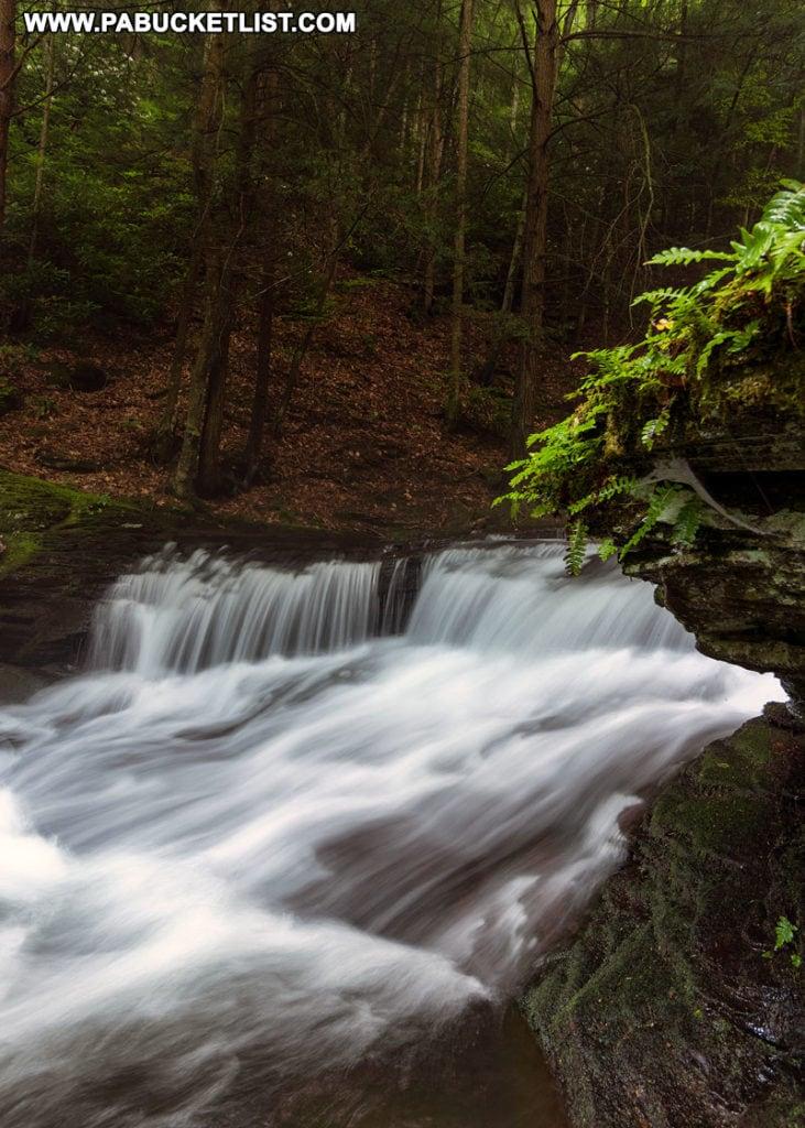 Wykoff Run Falls near Sinnemahoning PA