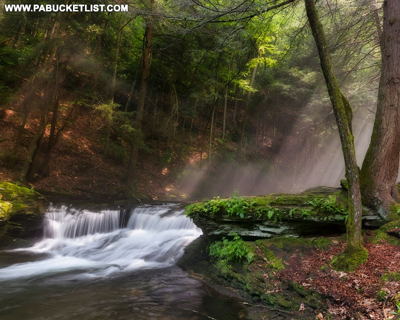 Sun rays beaming down on Wykoff Run Falls in the Quehanna Wild Area