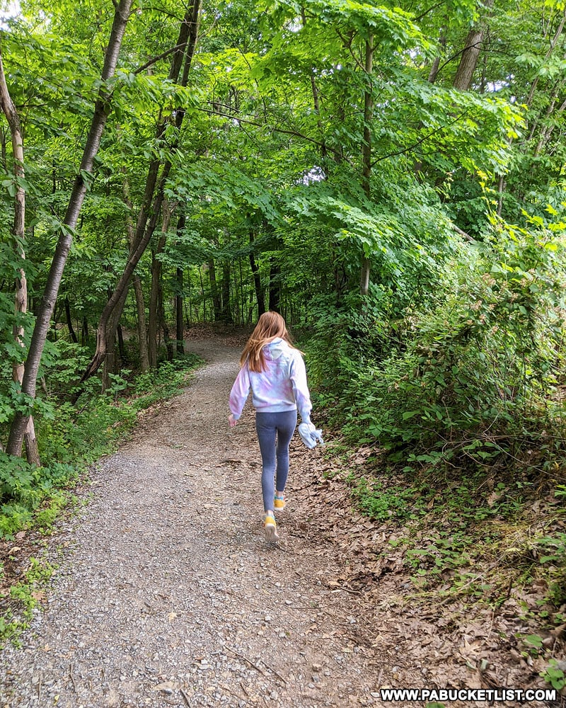 The Hawn's Overlook Trail at Raystown Lake.