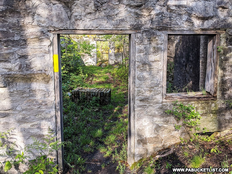 Door and window frames at abandoned Kunes Camp in the Quehanna Wild Area.
