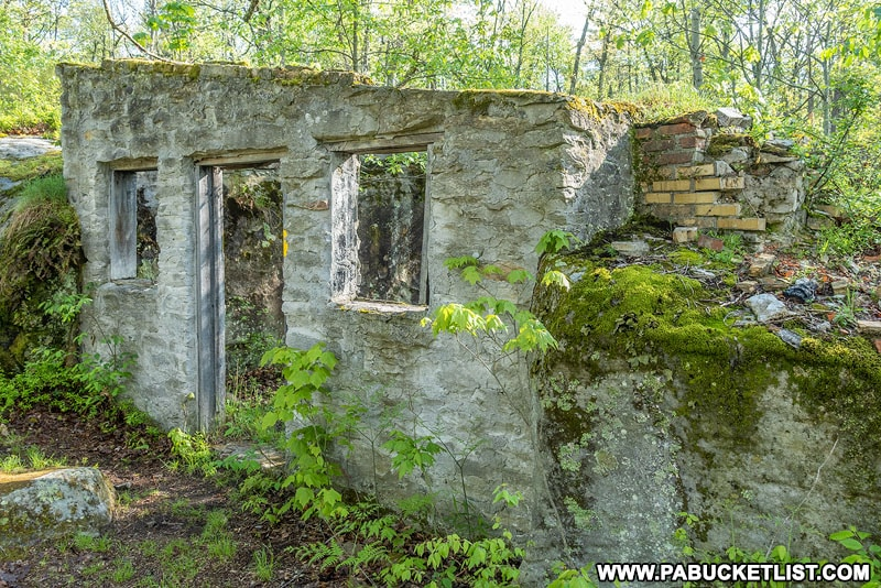 Back wall of the abandoned Kunes Camp in the Quehanna Wild Area.