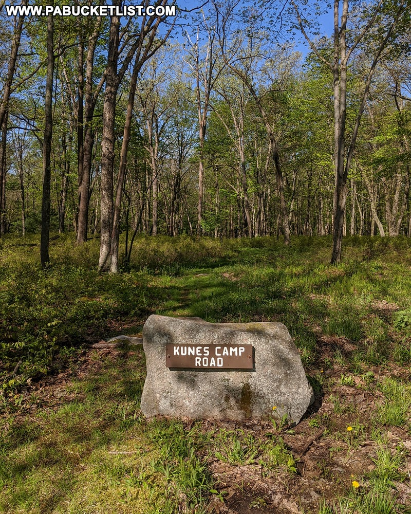 Kunes Camp trailhead near the Quehanna Highway