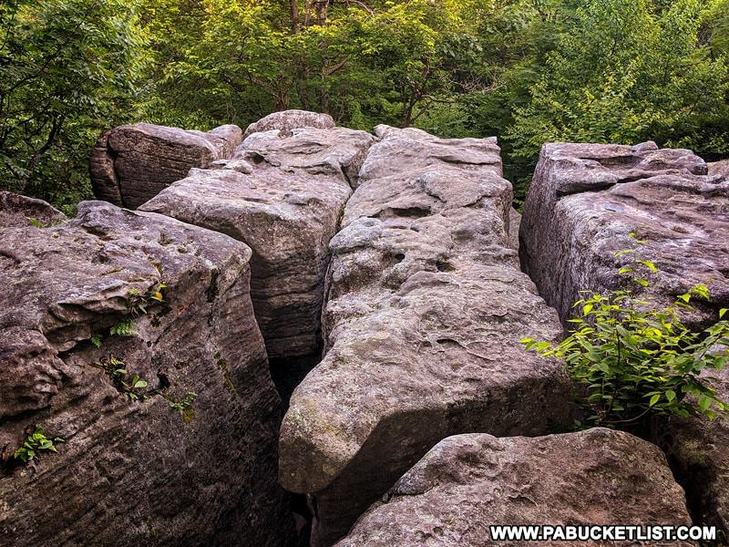 Baughman Rocks in Somerset County Pennsylvania.