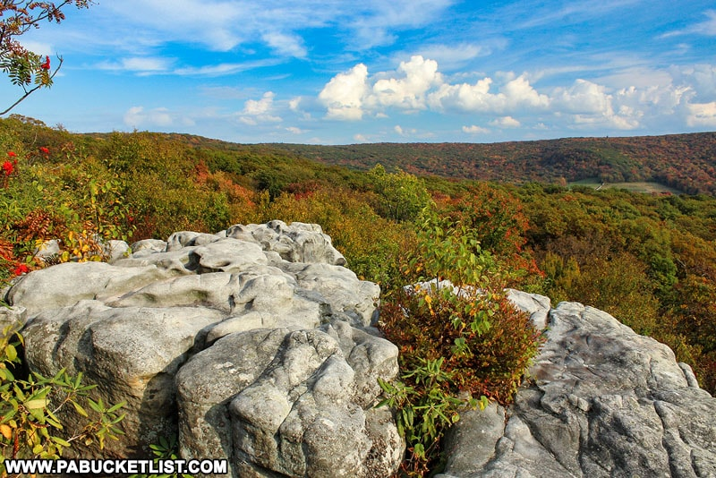 Fall foliage surrounding Camp Buckey Overlook in Somerset County PA