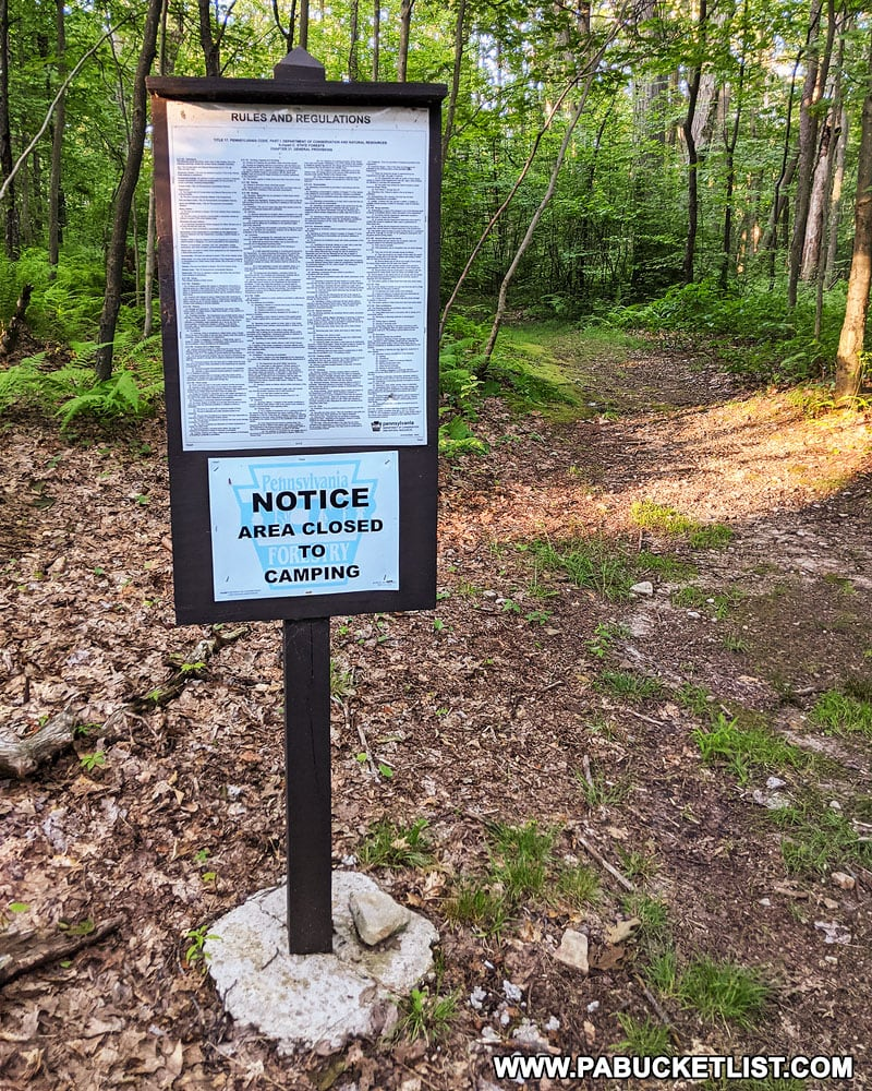 Camp Buckey Overlook trailhead in the Forbes State Forest.