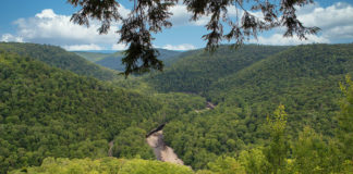Loyalsock Canyon Vista Sullivan County Pennsylvania
