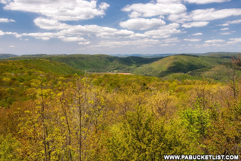 View from High Knob Overlook in Sullivan County.