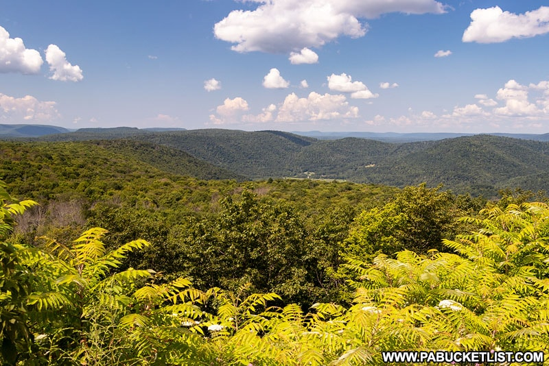 A summer afternoon at High Knob Overlook.
