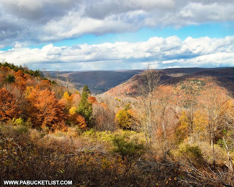 Fall foliage along High Knob Road in Sullivan County Pennsylvania.