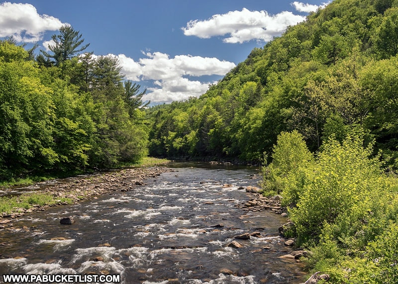 Loyalsock Creek as it passes through Worlds End State Park.