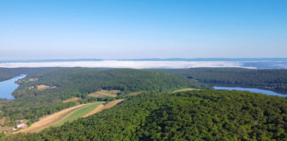 The view from High Point Lake Overlook on Mount Davis