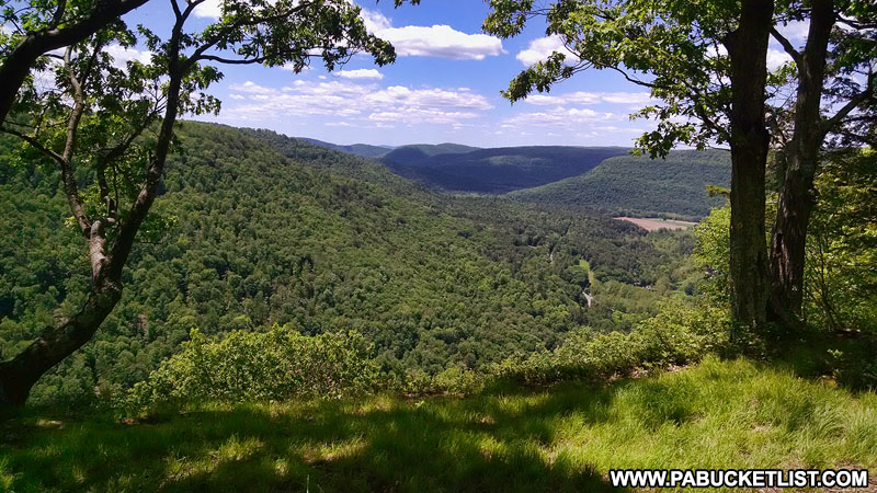 Upper Alpine Vista in the Loyalsock State Forest.