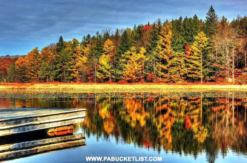 Fall foliage at Black Moshannon State Park.