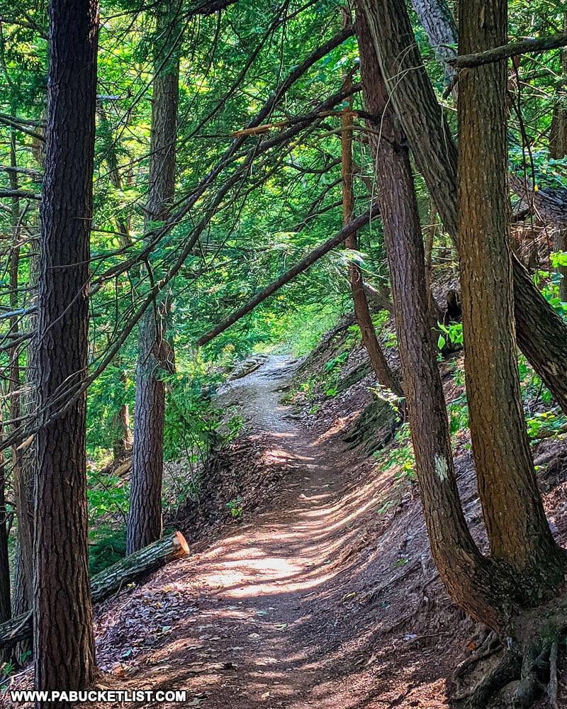Lake View Trail at Greenwood Furnace State Park.