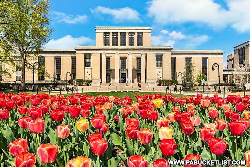 Pattee Library at Penn State University.