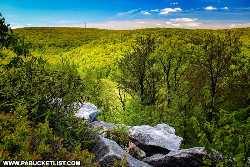 Springtime at Wolf Rocks Overlook in the Forbes State Forest