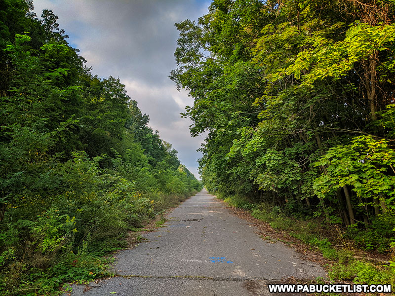 The Abandoned PA Turnpike near Breezewood.