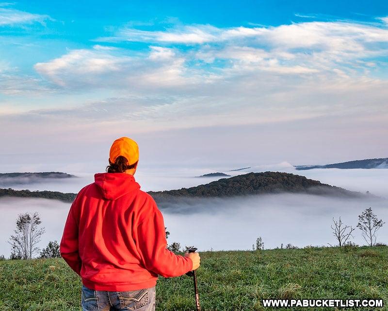 Bucktail Overlook Elk Viewing Area in Cameron County Pennsylvania.