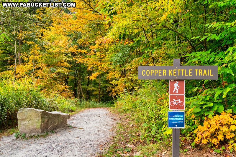 Fall foliage along the Copper Kettle Trail at Laurel Hill State Park.