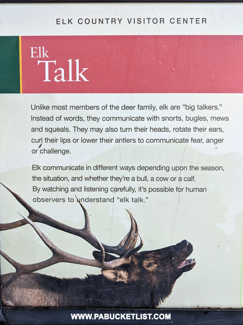 Elk talk information at the Elk Country Visitor Center in Benezette.