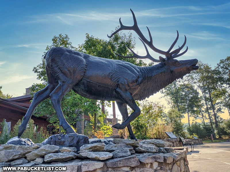 Elk sculpture at the Visitors Center in Elk County Pennsylvania.