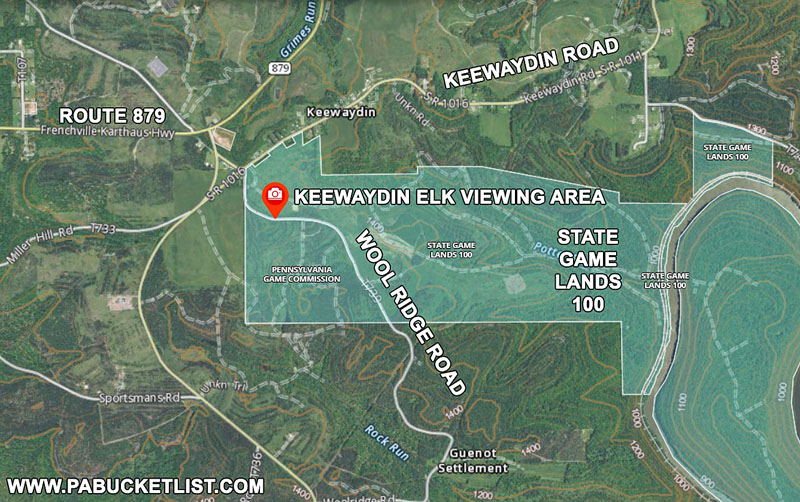 State Game Lands 100 near Keewaydin in Clearfield County.