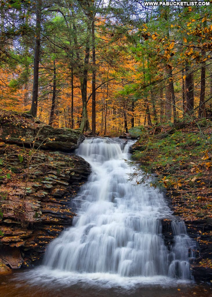 Fall foliage at Ketchum Run Falls in the Loyalsock State Forest.