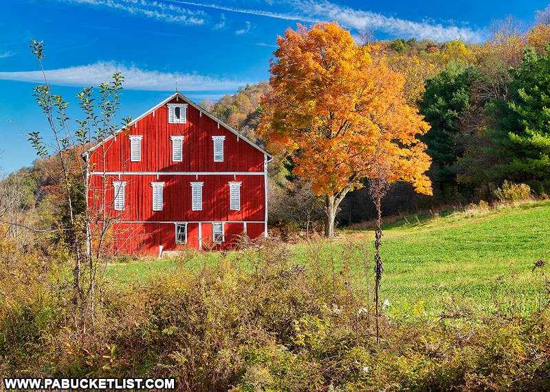 Fall foliage in the Laurel Highlands of Pennsylvania.